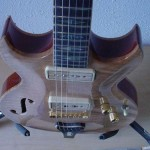 Custom Made Hand Crafted Electric with f-hole and quilted maple top JPGuitars